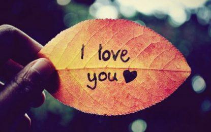 12 shprehje filozofike për dashurinë