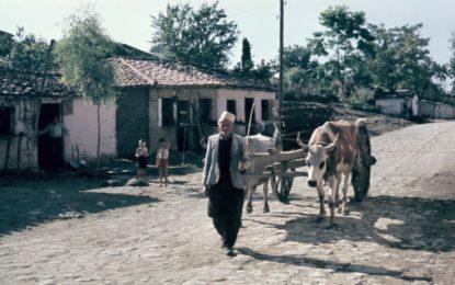 """Foto / Koleksioni """"shqiptar"""" i Fiedler-it"""