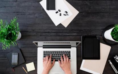 """Stres dhe ankth në punë/ Studimet: Mbajtja e një bime në zyrë mund të bëjë """"magji"""""""