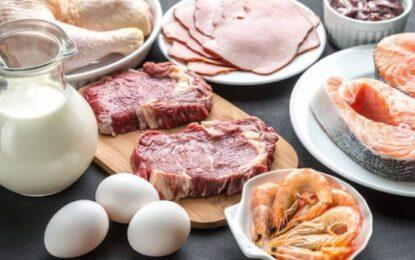 Shqipëria me çmimet më të larta në rajon për mishin, qumështin dhe vezët