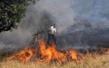 Shqipëria nën pushtetin e flakëve, 168 vatra zjarri vetëm në korrik